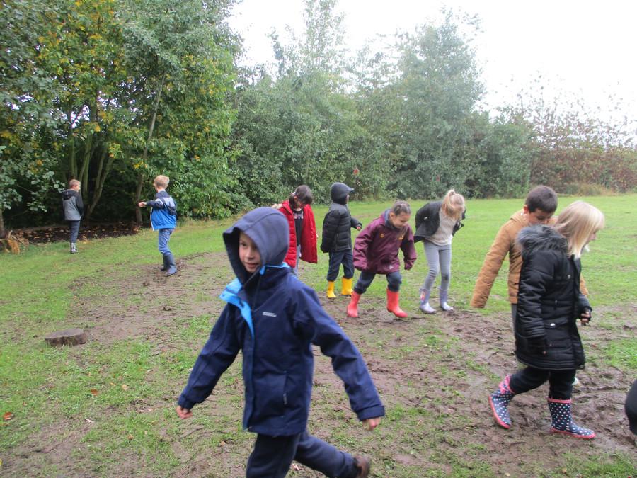 Exploring Forest School