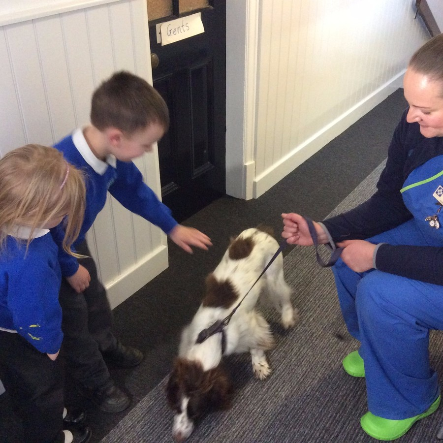 Melody the veterinary nurse and Chester the dog visit FS2