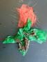 science roses (10).JPG