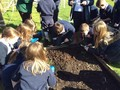 Composting (10).JPG