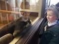 Blackpool Zoo (22).JPG