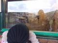 Blackpool Zoo (44).JPG