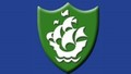 Green blue peter badge (Custom).jpg