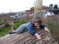 Squares forest school march17 022.jpg