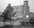Maidenmill3.jpg