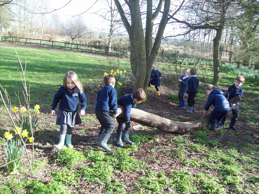 The Reception class busy  in the camp area in our school grounds