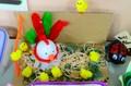 Easter Eggs (90).jpg