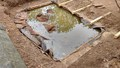 pond day 4-3.jpg