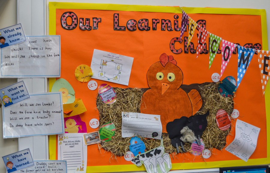 Ladybirds Learning Challenge Curriculum Board Spring 2