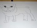 pug drawings (6).JPG