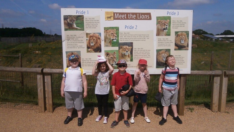 Y1 children learning about animals at the Yorkshire Wildlife Park.