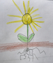 Then a yellow flower grows. Its petals are thin and small. They sparkle in the sun. Then it closes carefully and starts to turn white.