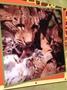 IMG_0617 - Copy - Copy (2).JPG