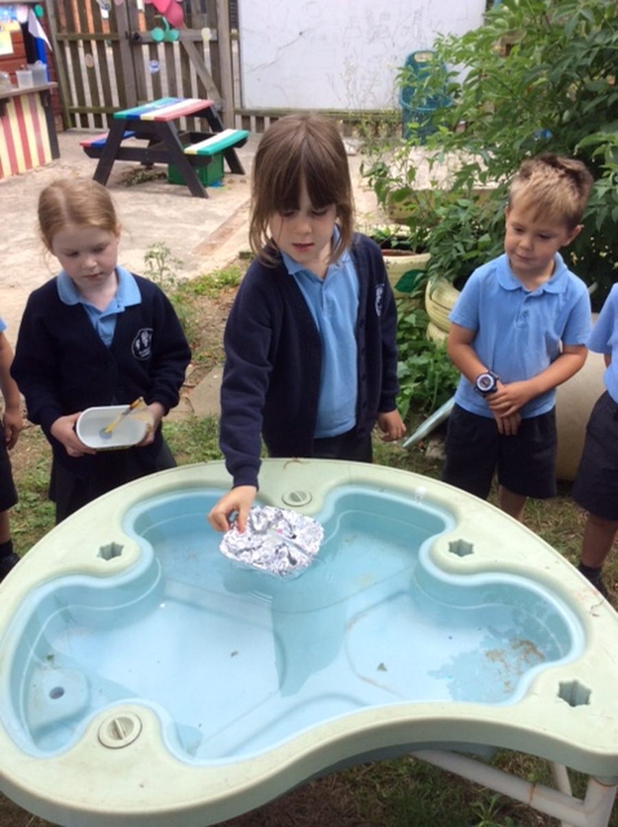 Hedgehogs investigated floating and sinking.  They made their own boats and tested them to see if they would float.