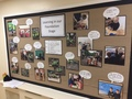New Learning Walls