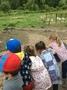 Nursery trip June 2017 082.JPG