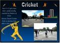 Cricket REVISED.jpg