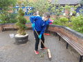 110717_Courtyard Gardening (2).JPG