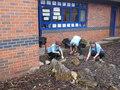 110717_Courtyard Gardening (3).JPG