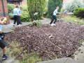 110717_Courtyard Gardening (15).JPG