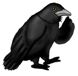 Reflective Raven pic.png