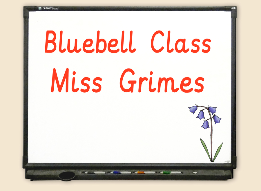 Go to Bluebell Class