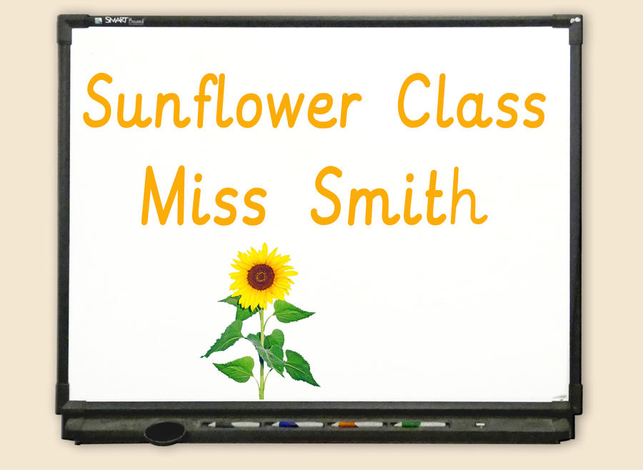 Go to Sunflower Class