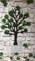 Main Singular Tree.JPG
