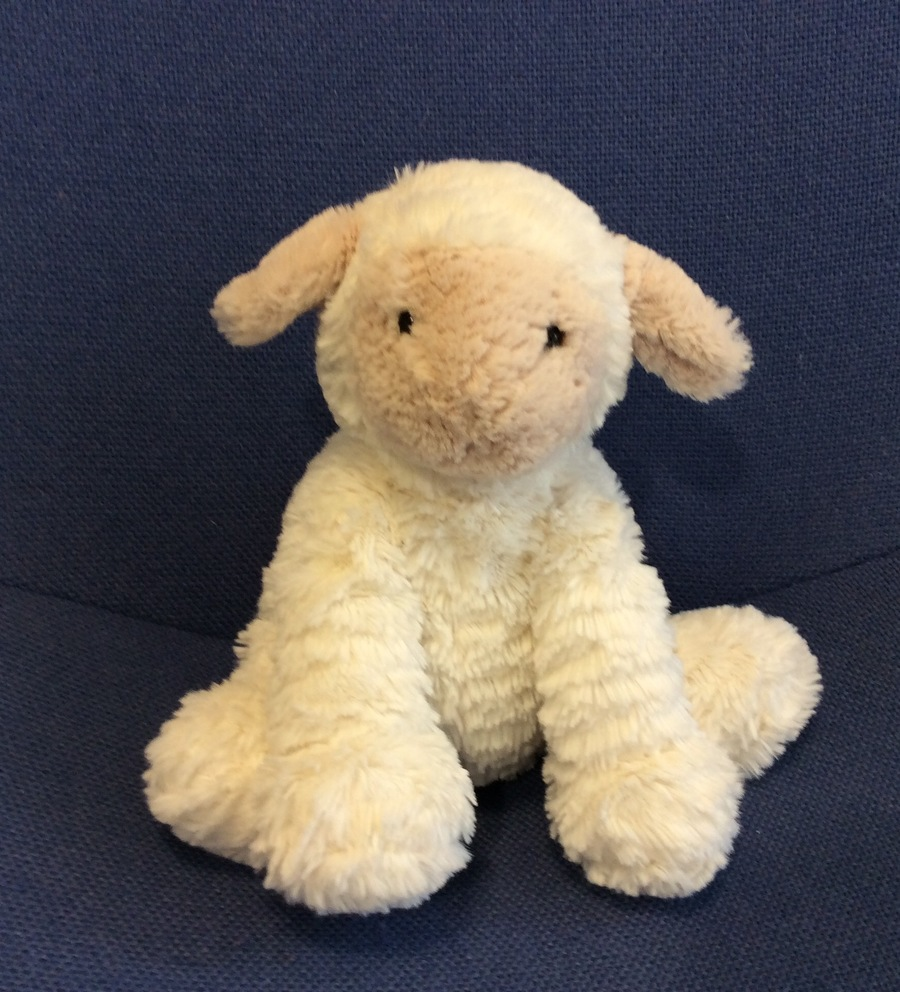 Larry the Lamb is our lovely new class mascot. He can't wait to visit you when your child becomes Star of the Week.