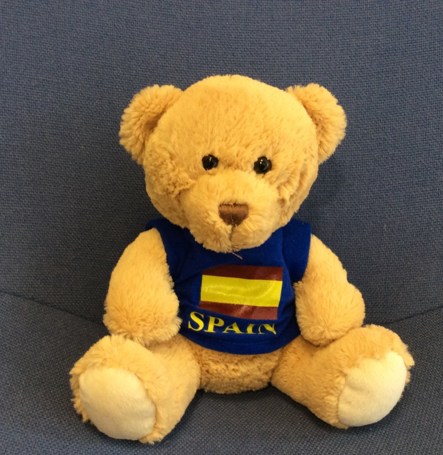 Bruce is our new Class Bear. He will be going home with the Star of the Week, with a diary to fill in all about his adventures.