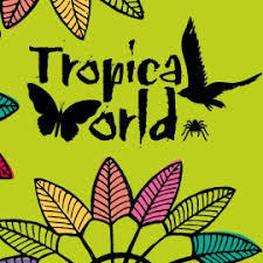 click on the link to visit the Tropical World home page