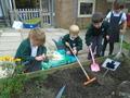 planting (4).JPG