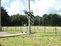 Group 3 Giant Swing (3).JPG