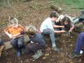 Group 3 Survival (1).JPG