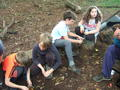Group 3 Survival (16).JPG
