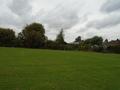 Buxton Cross country (36).JPG