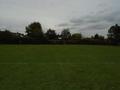 Buxton Cross country (62).JPG