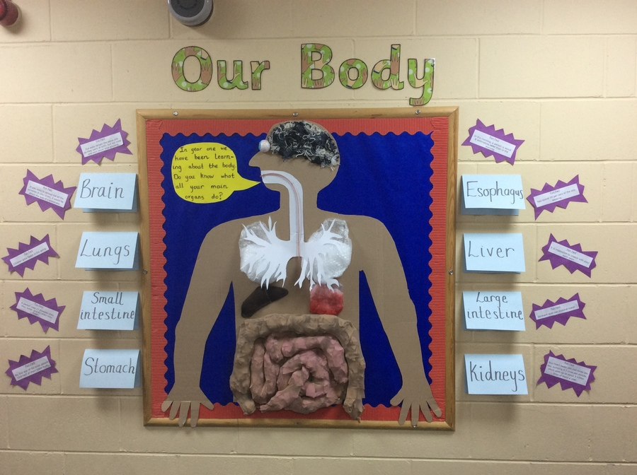 We built our own person!